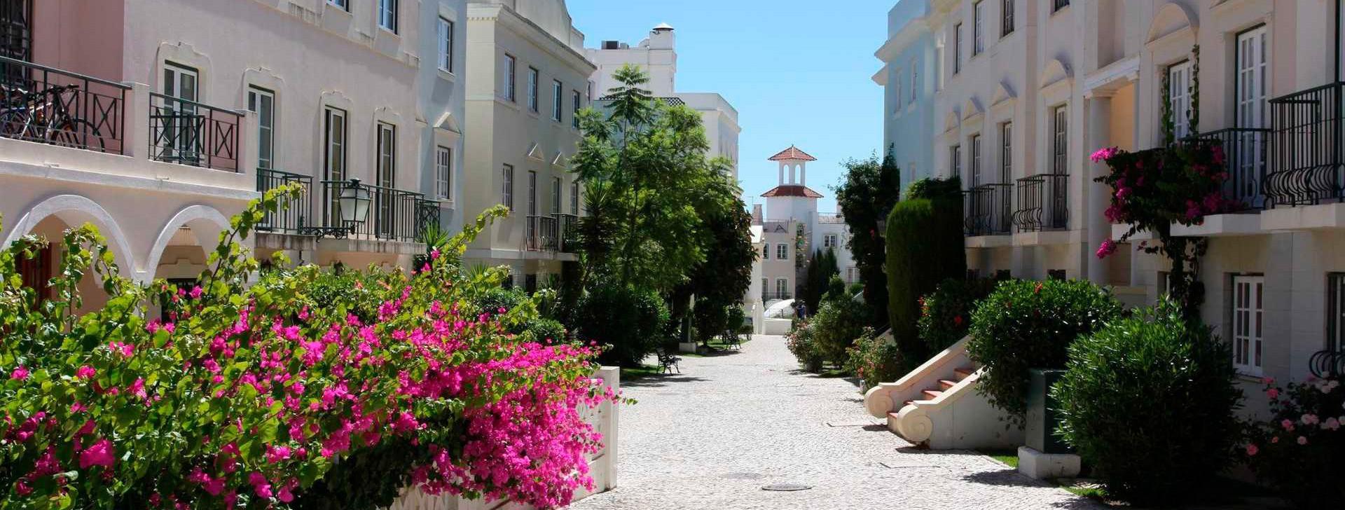 Search the Algarve!