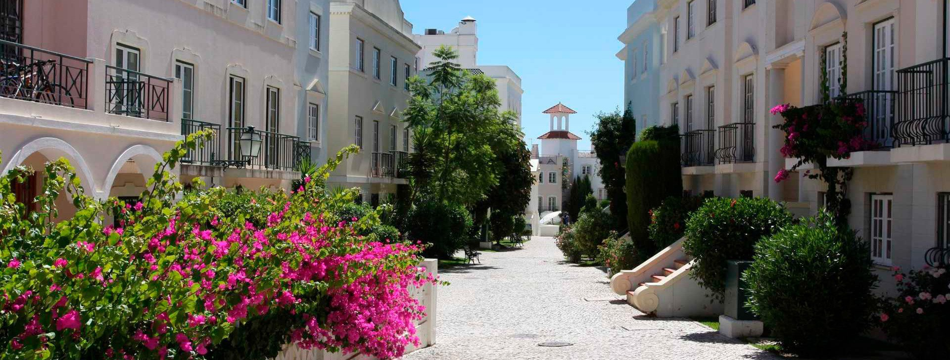 Busca en el Algarve!